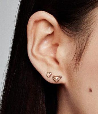 Rendu des clous d'oreilles Lionnes - 288022EN16