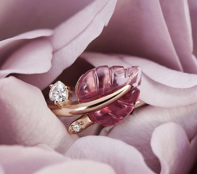Collection Automne 2019 : Or Rose