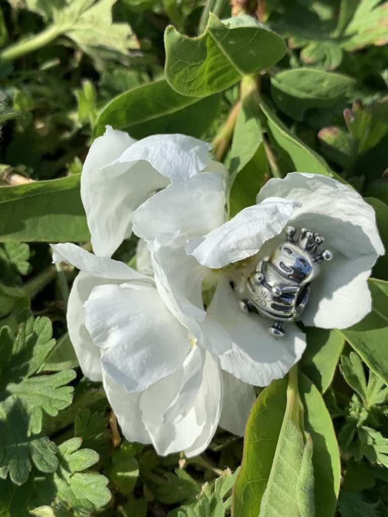 Charm du mois de Mars 20 ans Pandora : L'abeille