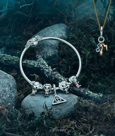 Charm les reliques de la mort avec Harry, Ron, Dobby et Hermione
